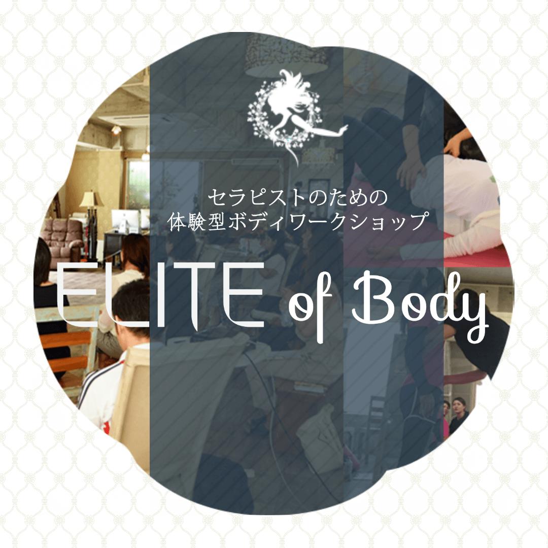 セラピストスキルアップELITE of Body
